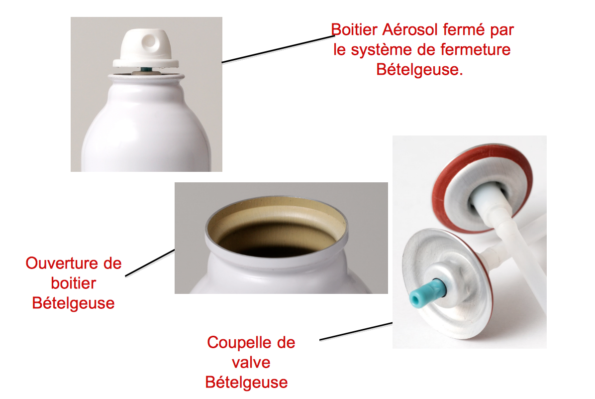 Projet Bételgeuse - Coupelle de valve Bételgeuse